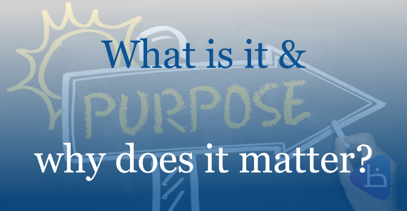 PURPOSE – What is it and why does it matter